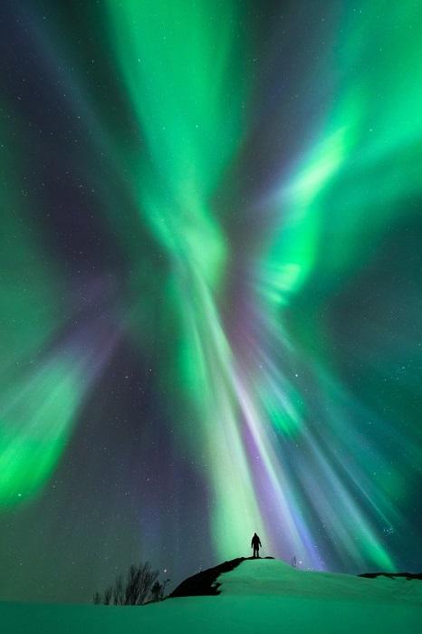 Северное полярное сияние, Нурланн, Норвегия. Фотограф Tommy Eliassen.