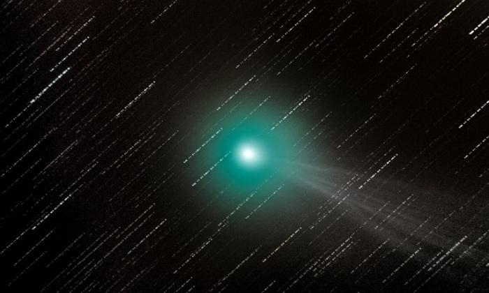 Периодическая комета, которая была открыта 17 августа 2014 года астрономом Терри Лавджоем из Брисбена, Австралия. Маркет Харборо, Лестершир, Англия. Фотограф George Martin.