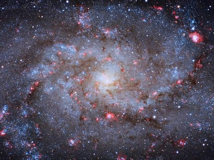 Галактику M 33, которая находится в 3 миллионах световых лет от Земли, часто именуют галактикой Треугольника по названию созвездия, в котором она находится, Алмере, Нидерланды. Фотограф Michael van Doorn.