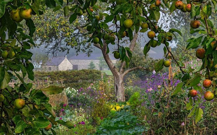 Aberglasney Gardens, Уэльс. Автор фотографии: (Nigel McCall) Найджел МакКолл.