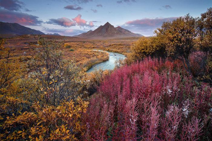 Территориальный парк Тумстоун, Канада. Автор фотографии: (Andrea Pozzi) Андреа Поззи.