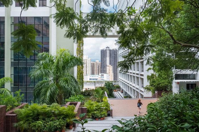 Гонконг, Китай. Автор фотографии: (Annie Green-Armytage) Энни Грин-Армитаж.