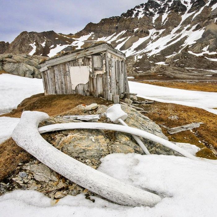Финалист конкурса – фотограф Крис Доббс (Chris Dobbs) со снимком маленького деревянного строения, возведенного китобоями еще в 17-м веке.