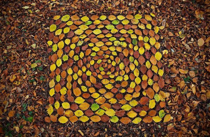 Разноцветные буковые листья – один из любимых материалов художника Джеймса Бранта.