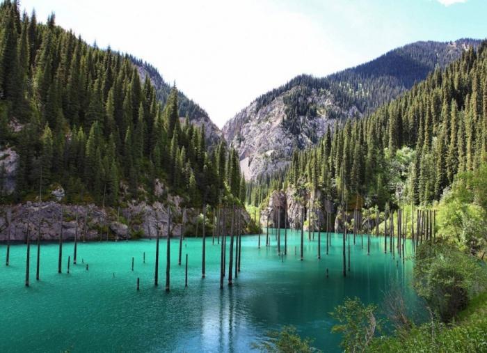 Уникальное озеро образовалось в результате землетрясения, вода затопила небольшое ущелье и под ней оказались вековые деревья.