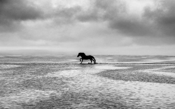 Ветер, море и свобода.