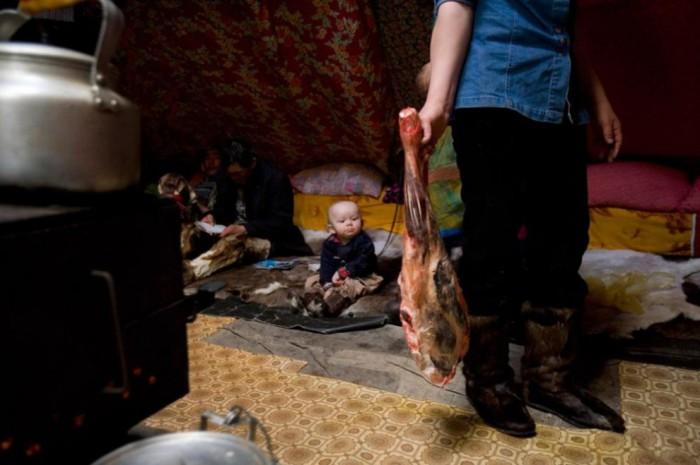 В этом маленьком чуме готовится обед для небольшой бригады оленеводов и для членов их семей.