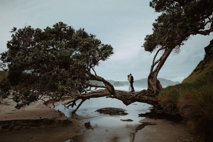 Красивая фотография  напоминает об одном из самом счастливом дне влюбленных. Автор фотографии: (Catherine Brock) Кэтрин Брок.