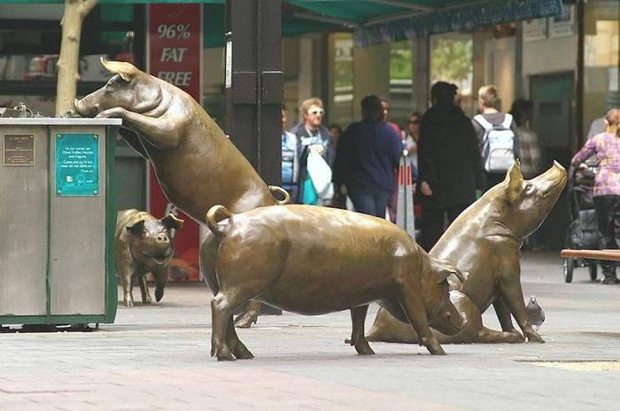 В центре города были установлены скульптуры свиней в рамках заключительного этапа модернизации улицы.