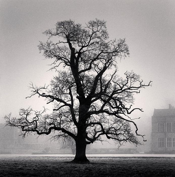 Сумерки, в которых так любит снимать знаменитый британский фотограф, добавляют контрастным работам частичку сюрреализма.