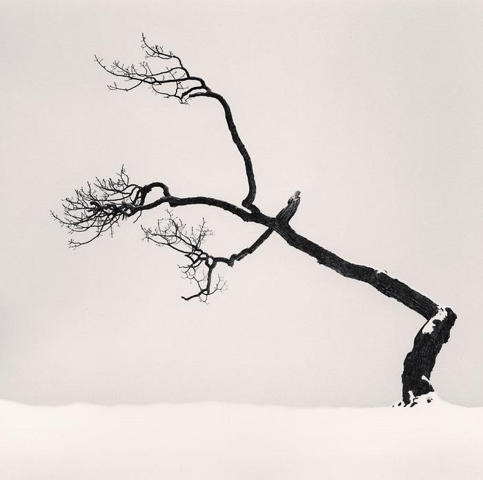 Работы Майкла Кенны стали эталоном пейзажного жанра, на который равняются как начинающие, так и признанные современные фотографы.