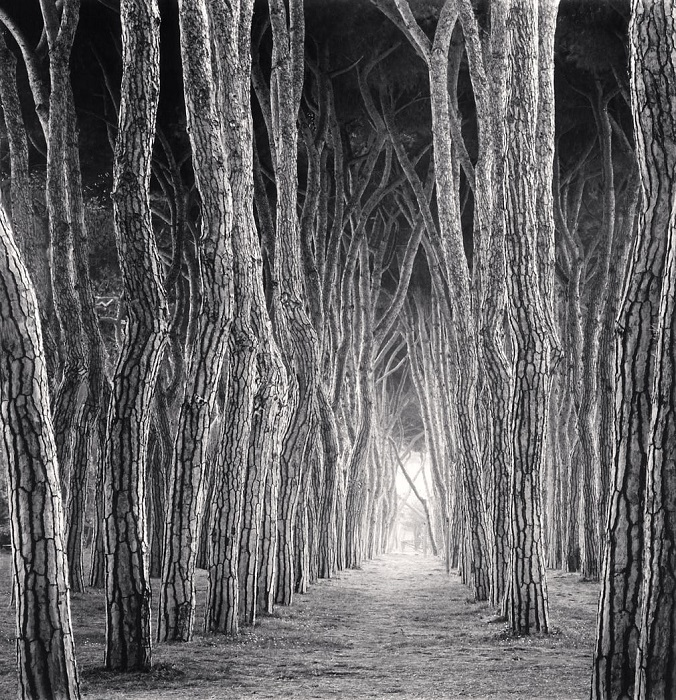 Сегодня фотопейзажи британского фотографа Майкла Кенны, как и его лаконичный черно-белый стиль, известны во всем мире.