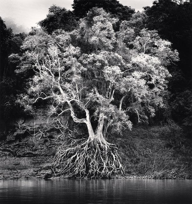 Монохромные снимки британского фотографа наполнены спокойствием и некоторой таинственностью.