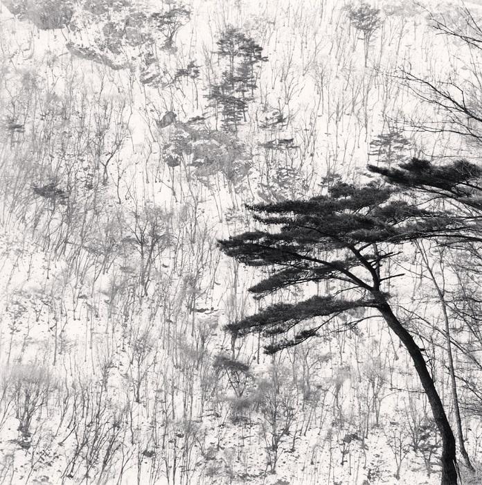 «Когда информации меньше – больше работает воображение», - так объясняет фотограф свое стремление к минимализму на снимках.
