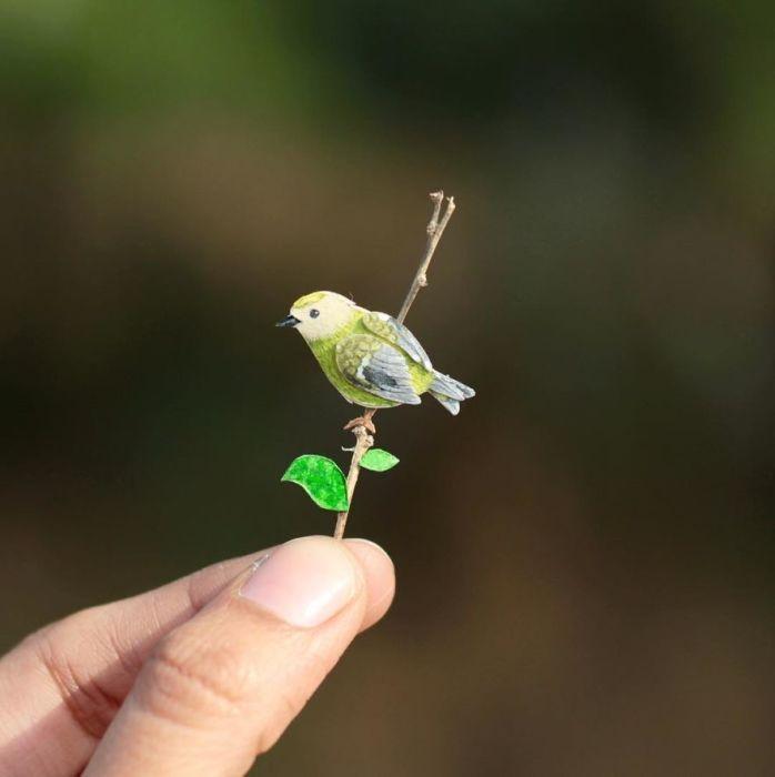 Маленькая певчая птица.