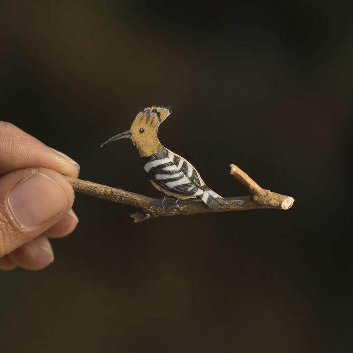 Маленькая яркоокрашенная птица.