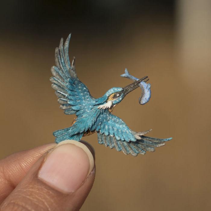 Птица с необычайно яркой краской.