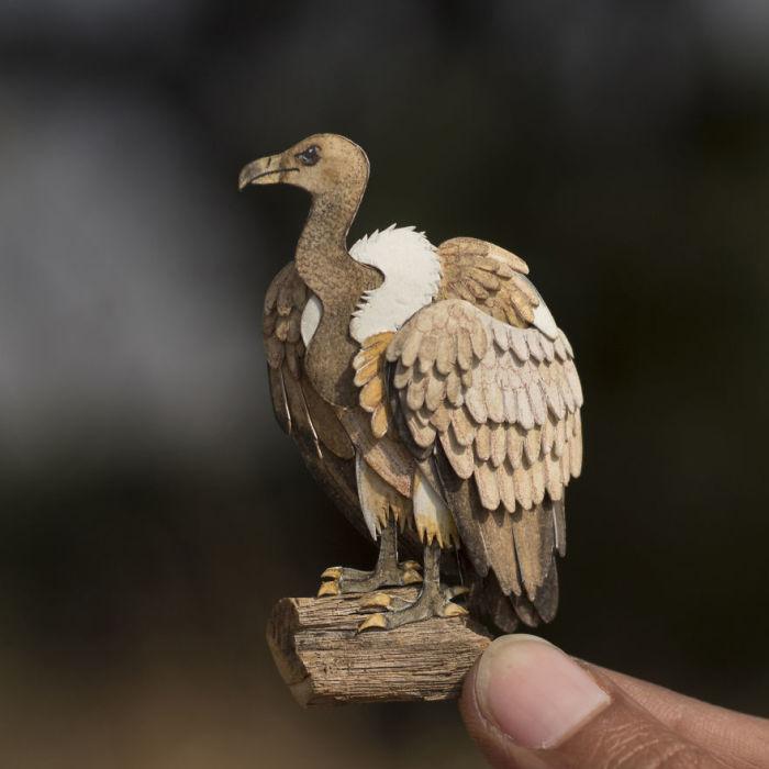 Крупная хищная птица.