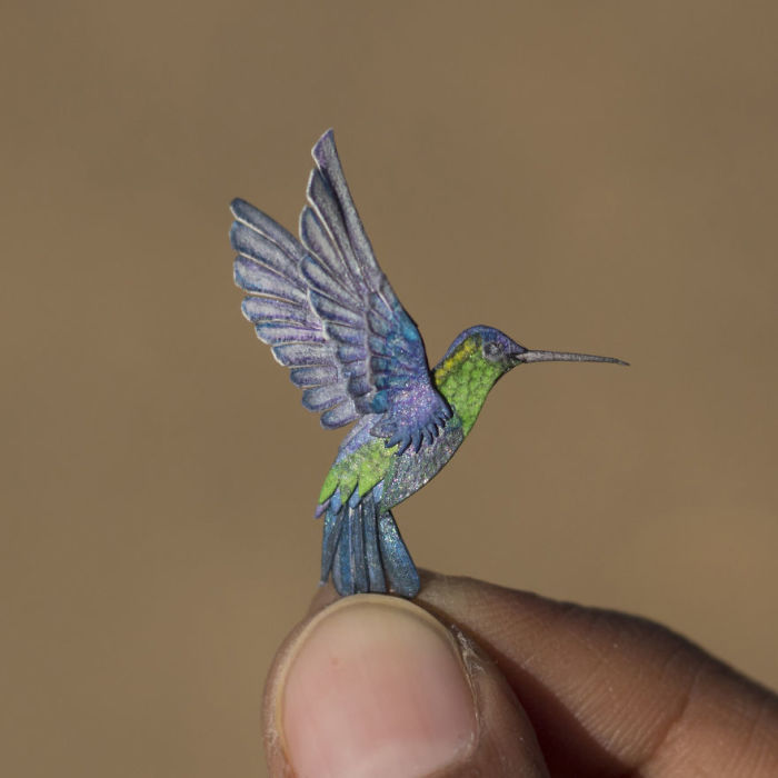 Самая маленькая птица в мире.