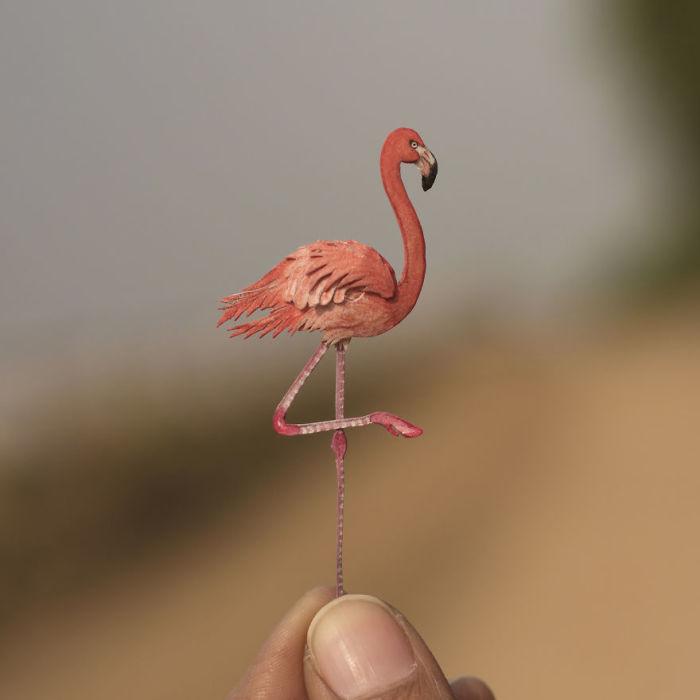 Крупная птица с красивыми перьями.