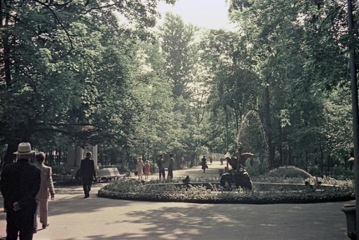 Вид на включенный фонтан со скульптурой «Мальчик, играющий с лебедем», который был построен в честь открытия городского водопровода в 1874 году.