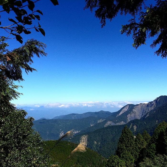 Удивительной красоты природа от фотографа из Тайваня Литтл Су.