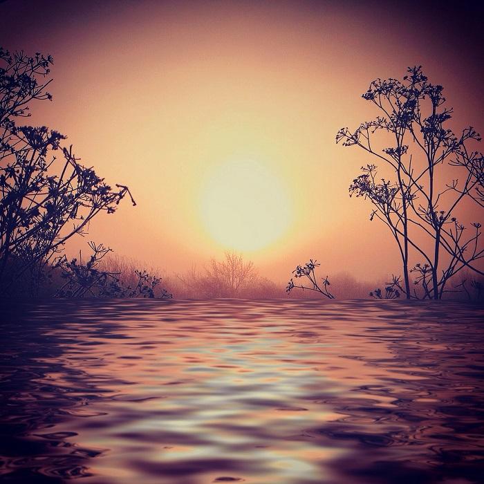 Сказочный вид заката. Фотограф Али Жардин.