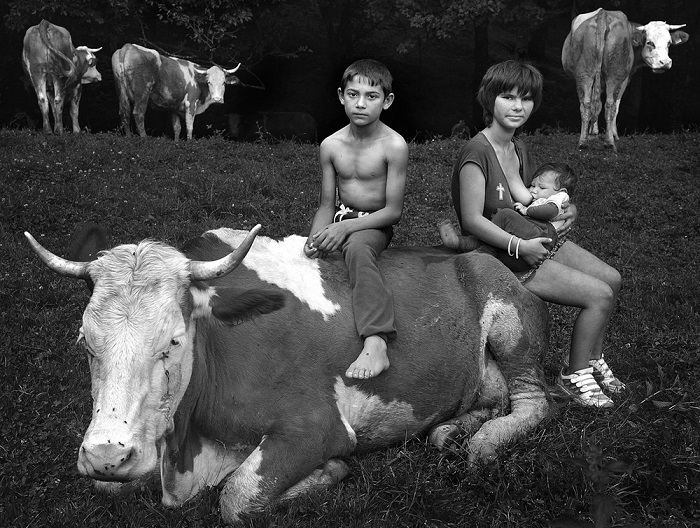 2-е место в категории «Люди» присуждено венгерскому фотографу Иштвану Керексу (Istvan Kerekes), запечатлевшему пастухов со стадом коров на лесной поляне.