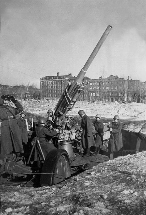 В самом начале 1942 года второй раз от бомбардировки пострадал Московский зоопарк.