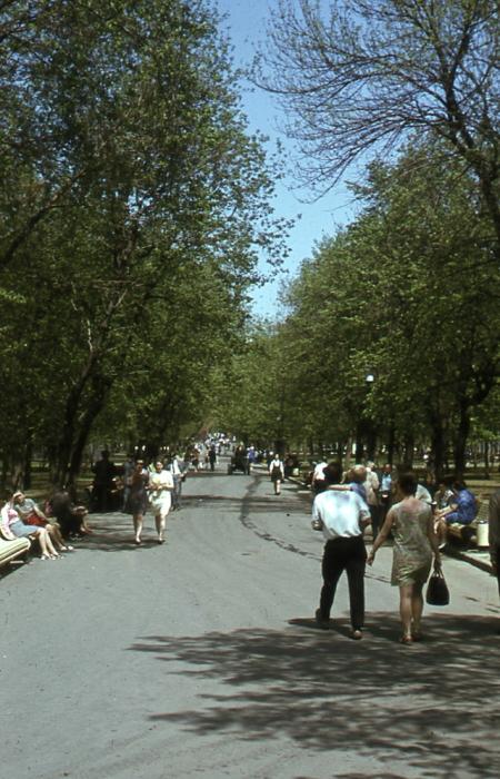 Прогулка аллеями парка.