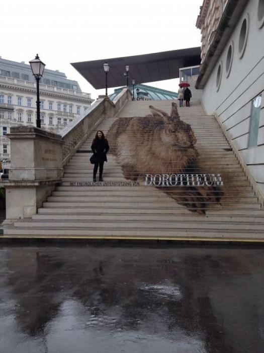 Расположившийся перед входом в музей Альбертина в Вене огромный полевой заяц является репродукцией картины художника Альбрехта Дюрера, чьи работы представлены внутри здания.