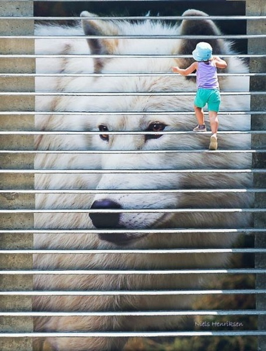 Канадские дизайнеры прикрепили к ступеням уличной лестницы принт с изображением головы волка.