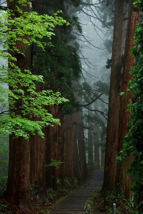 Одна из трёх священные горы в префектуре Ямагата.
