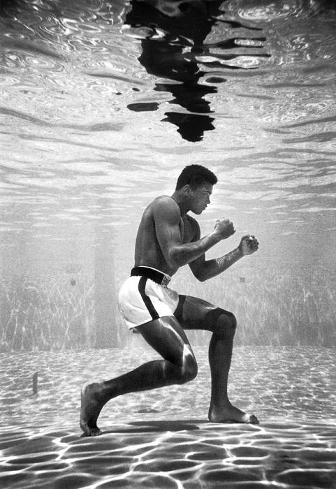 Мохаммед, тогда Кассиус Клей, обучение в бассейне в отеле Sir John, Майами, 1961 год.