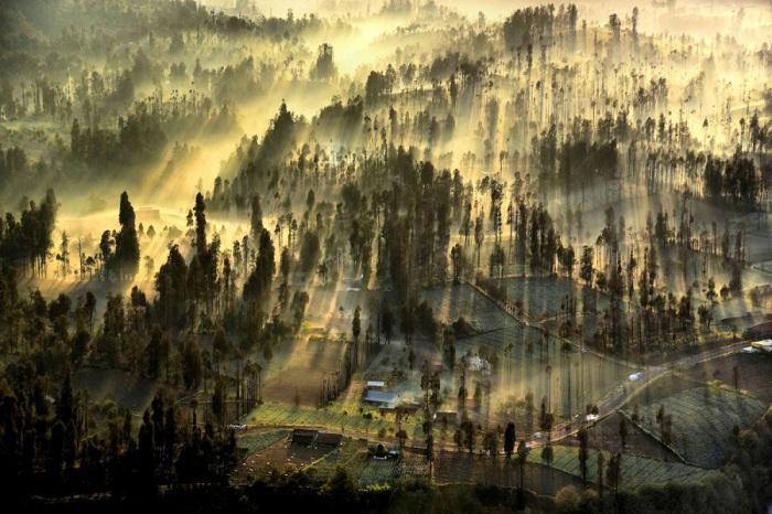 Туманное утро в маленькой деревушке Чеморо Лаванг в момент восхода солнца. Фотограф Ахмад Сумавайя (Achmad Sumawijaya).