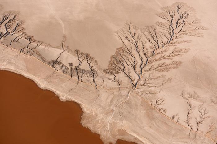 Озеро Коен, которое сезонно становится бессточной областью, в пустыне Мохаве, Калифорнии. Фотограф - Jassen T.