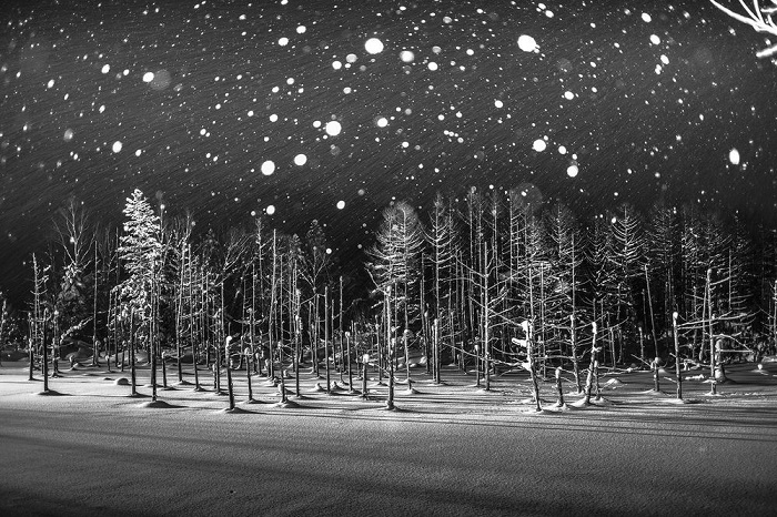 Похвальные отзывы жюри в категории «Места» получил снимок замерзшего пруда Биэй, сделанный японским фотографом Рукка Й Ито (Rucca Y Ito) во время снегопада.