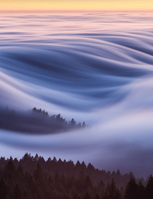 Похвальные отзывы жюри в номинации «Места» получил снимок американского фотографа Дэвида Одишо (David Odisho) с летним туманом в горах Тамальпайс.
