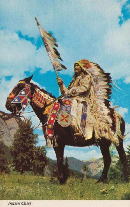 Индейцы Калифорнии занимались в основном собирательством, охотой и рыбалкой.