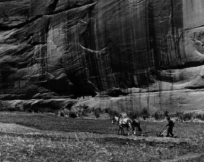 Мужчина Навахо пашет землю. Каньон-де-Шей, Аризона, 1948 год.