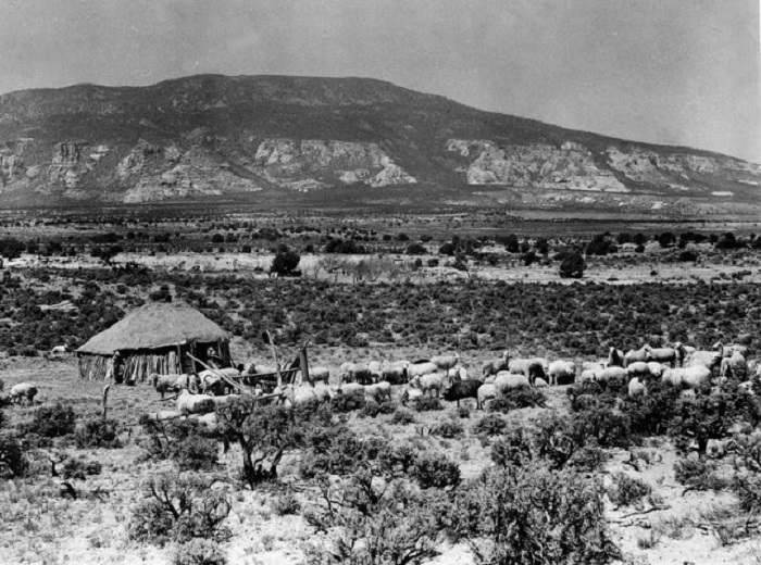 Горы Навахо. Юта, 1948 год.