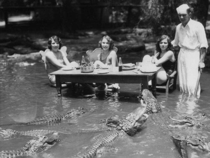 Девушки позируют в водоеме с аллигаторами.