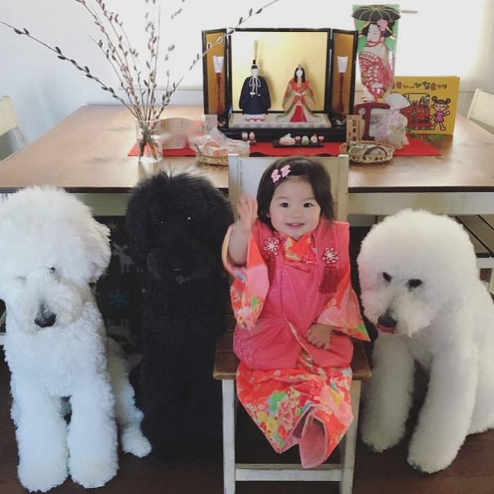 Очаровательная малышка в окружении своих четверолапых друзей и помощников.