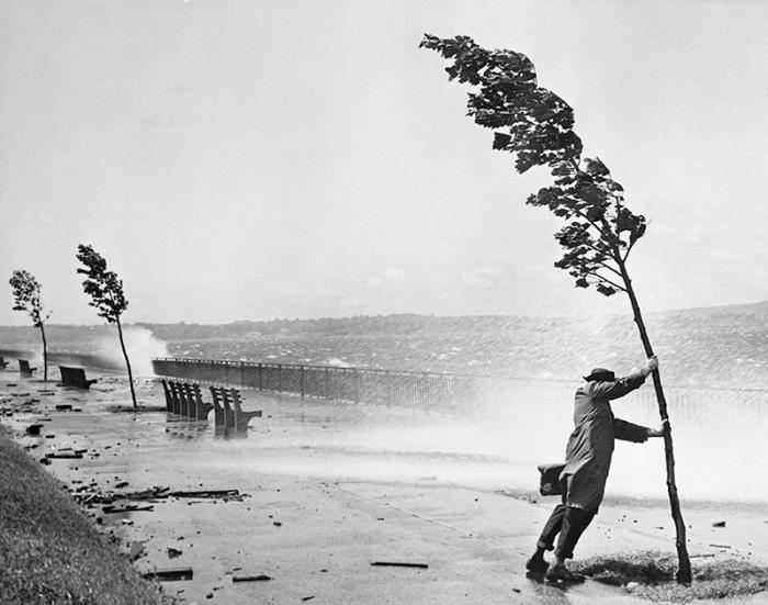 Прохожий держится за дерево - огромные волны у береговой линии Нью-Джерси были вызваны ураганом «Кэрол».