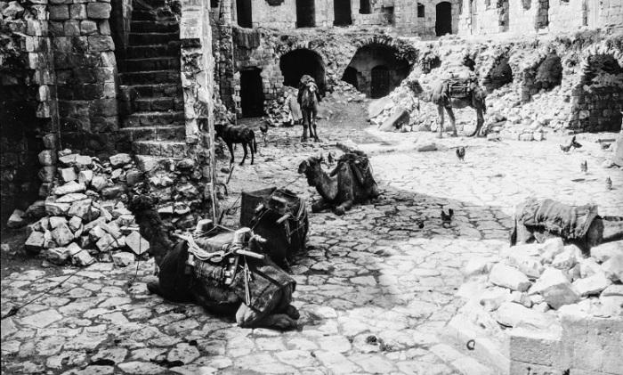 Караван верблюдов на отдыхе в старом городе.