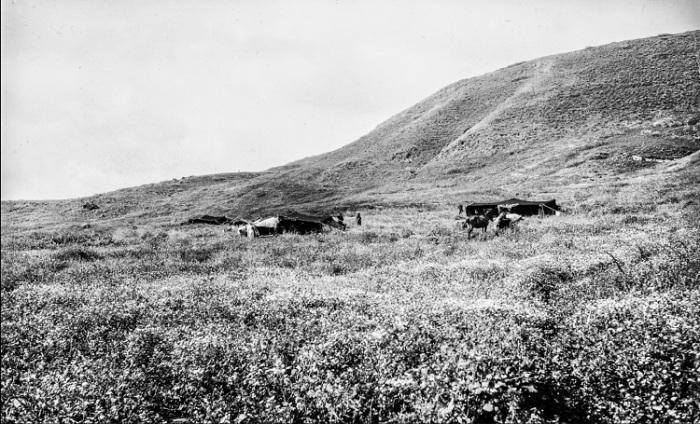 Палаточный лагерь коренных жителей пустыни.