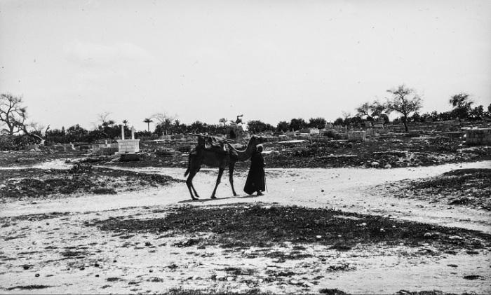 Историческое кладбище в городе Яффа.