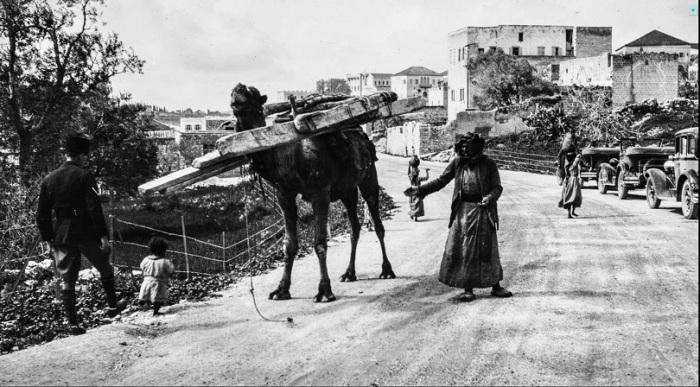 Верблюд перевозит груз через пустыню в Назарет.