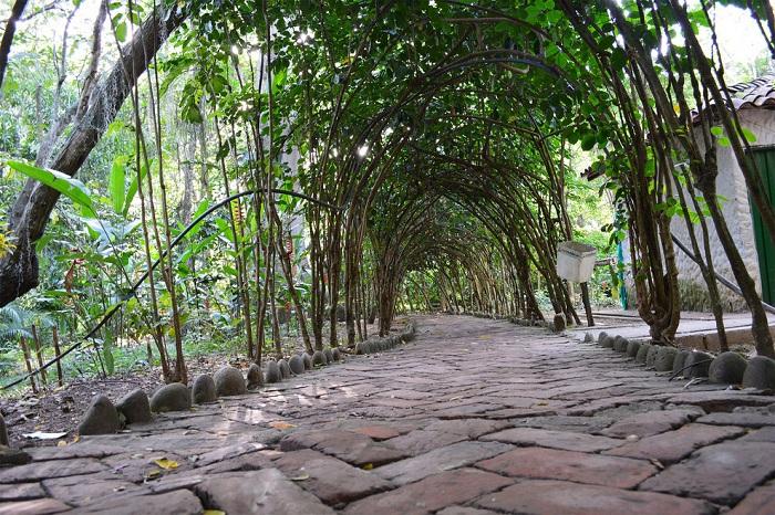 Заповедник входит в число самых посещаемых мест в Колумбии.