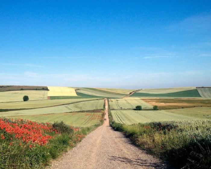 Дорога французских королей в Испании.